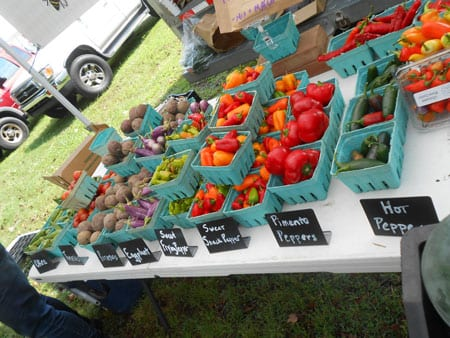 Honey Bee Hills Farmers Market Caswell